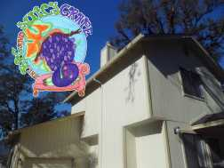 The Big and Juicy Grape Guesthouse in Sonoma Valley as seen from driveway. A split level shotgun style house.