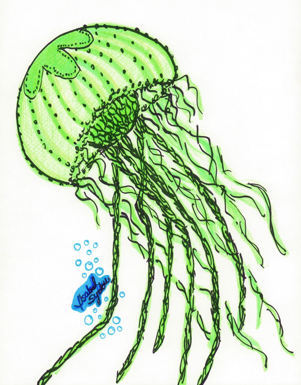 Jelly Fish Green Brolly