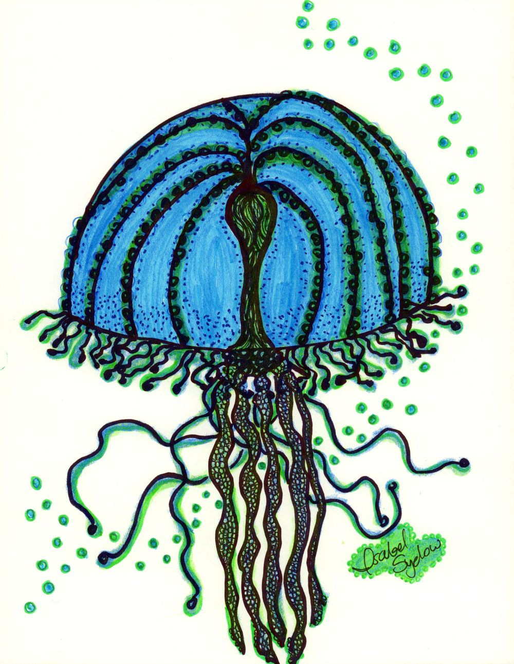 Jelly Fish Azul