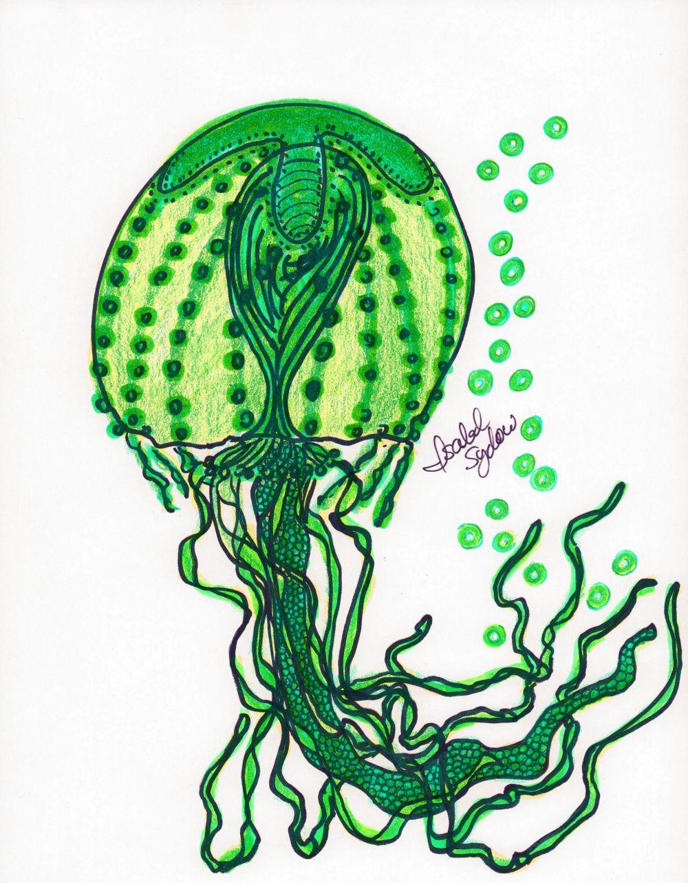 Jelly Fish Greenest Green