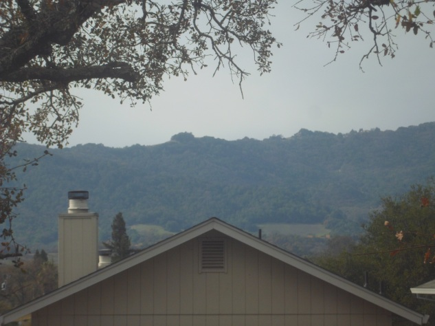 Sonoma Mountain is seen from the view out the Orange Room, one of two bedrooms of our Sonoma Valley vacation guesthouse.